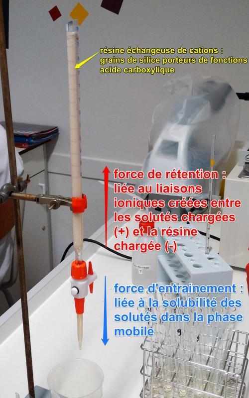 Chromato echange ions 2b