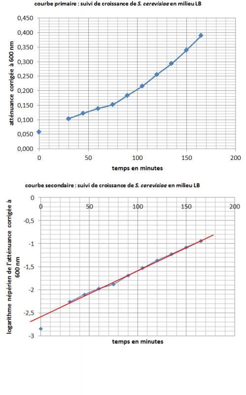 Croissance s cerevisiae en milieu lb 2