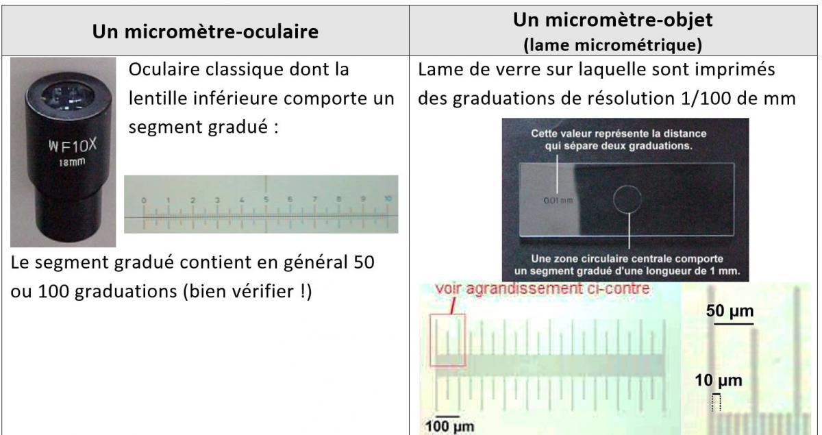 Etalonnage microscope 1