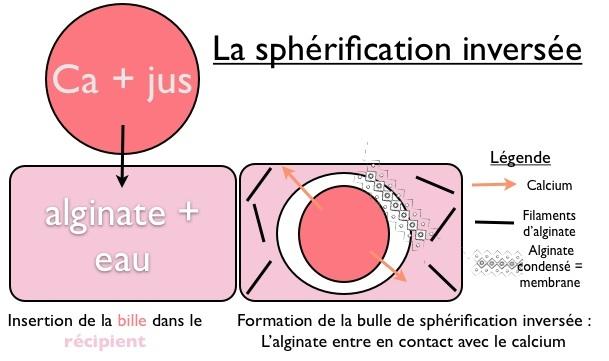 Spherification inversee